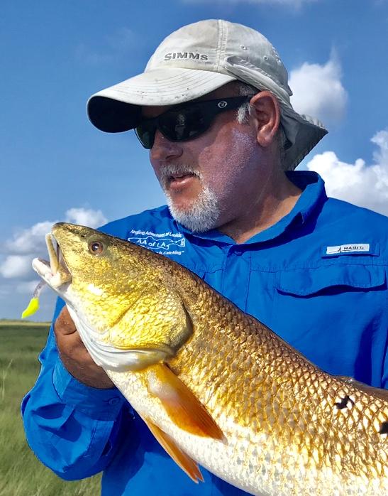 Captain Mike Gallo Fishing
